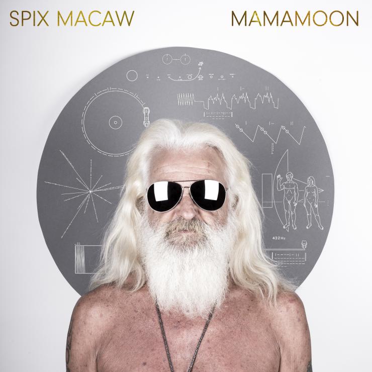 SPIX MACAW MAMAMOON 2017